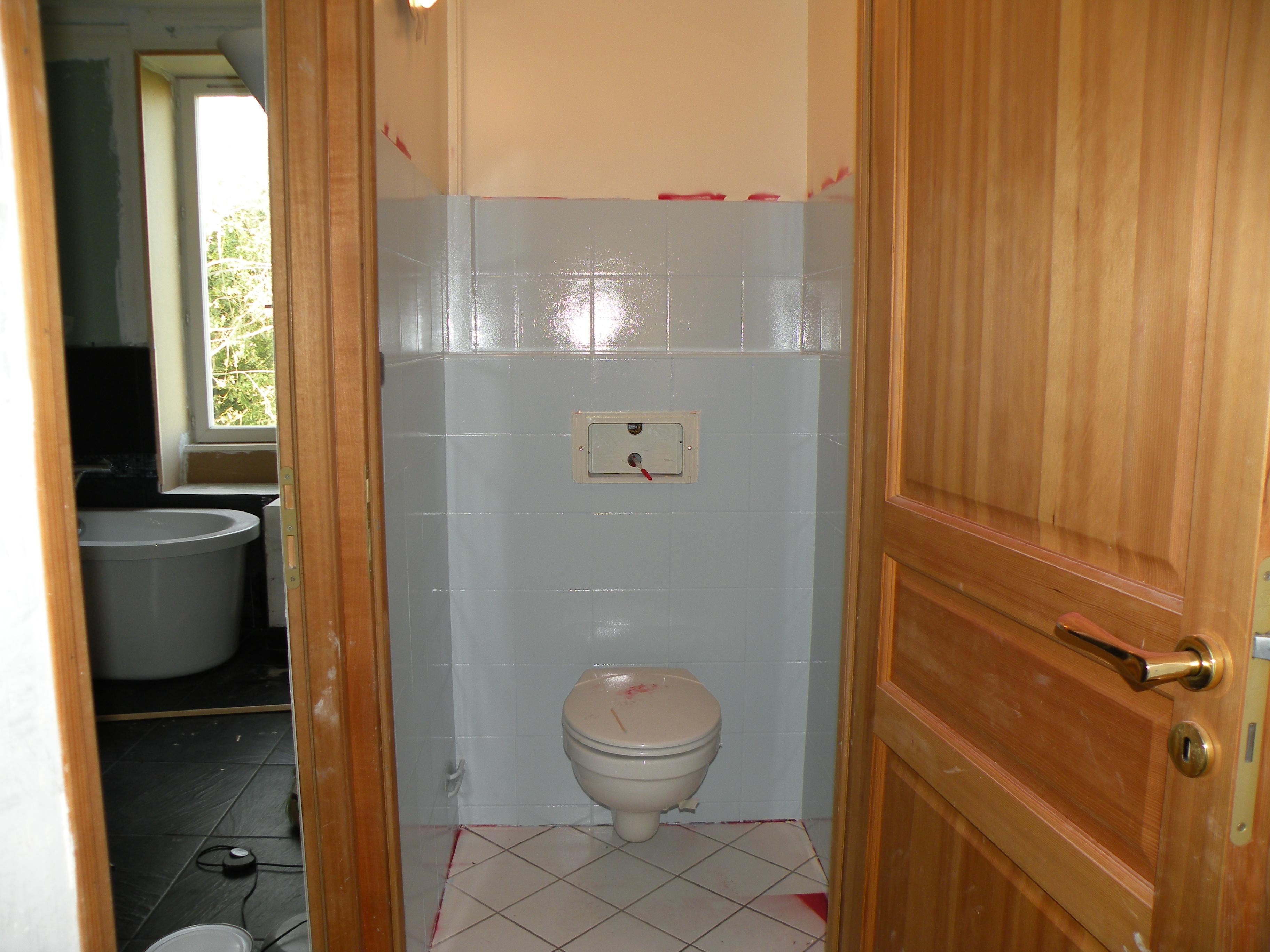 Les toilettes du haut - Peinture carrelage argent ...