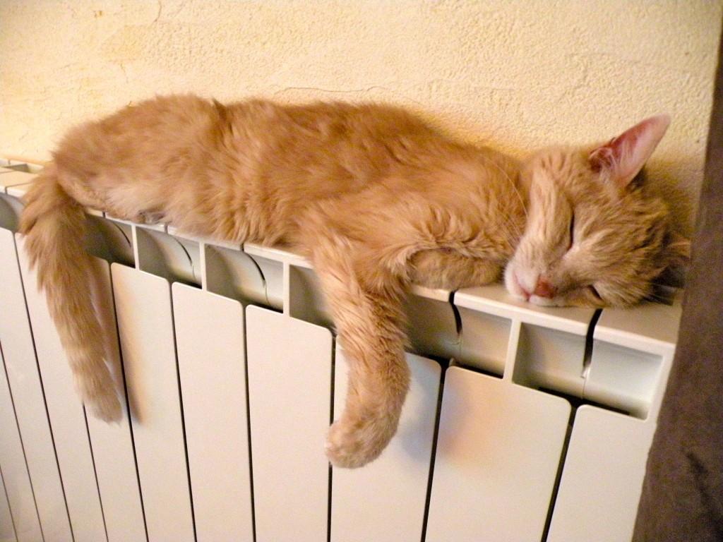 Hebdorama 3 - Mon radiateur ne chauffe pas ...