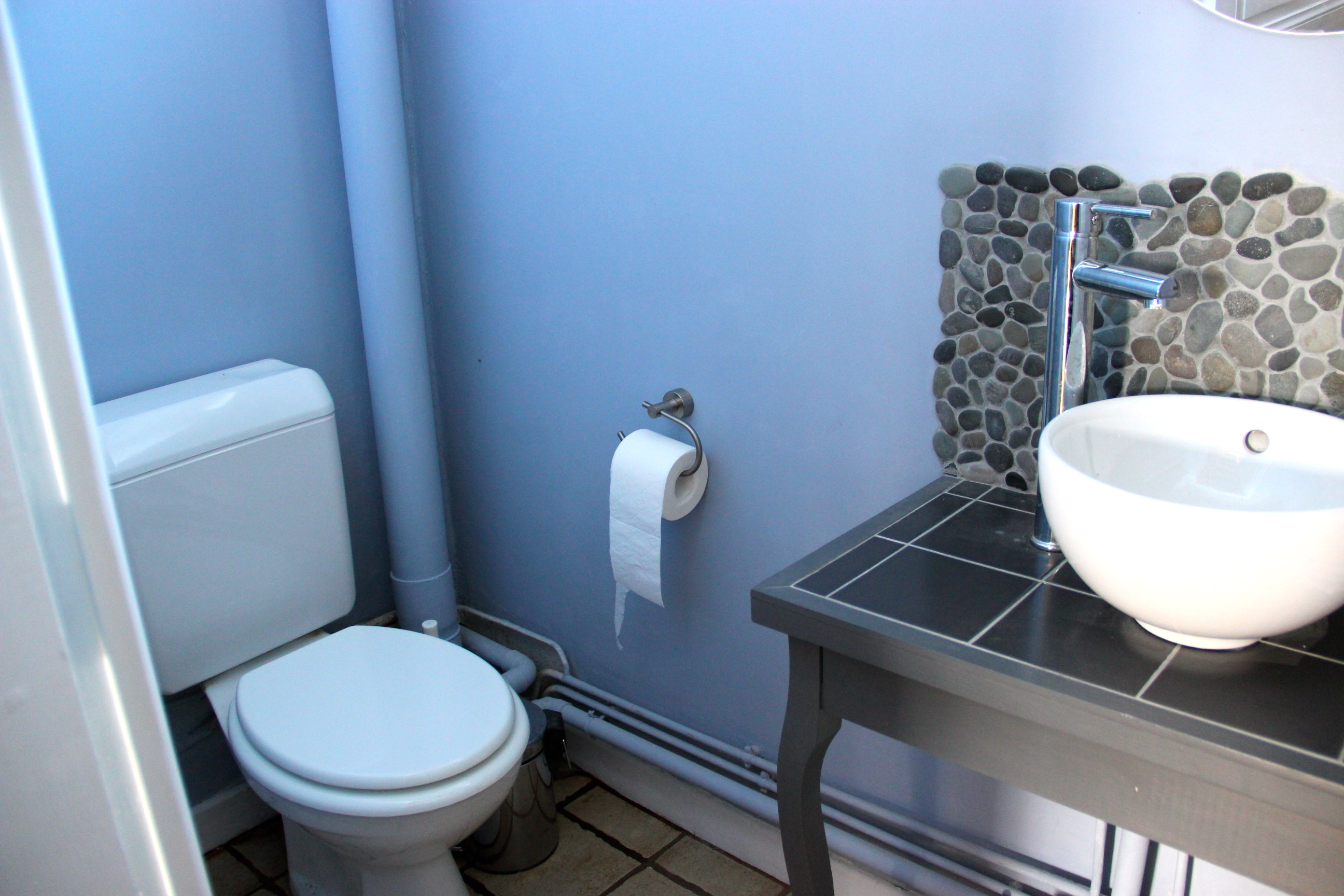 Peindre la cuvette des toilettes - Relooker ses wc ...